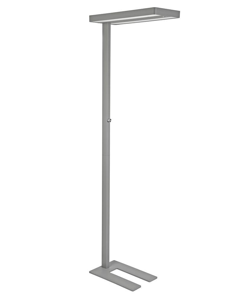 LED standard lamp, MAULJuvis, dimmable, height 1950 mm, with base