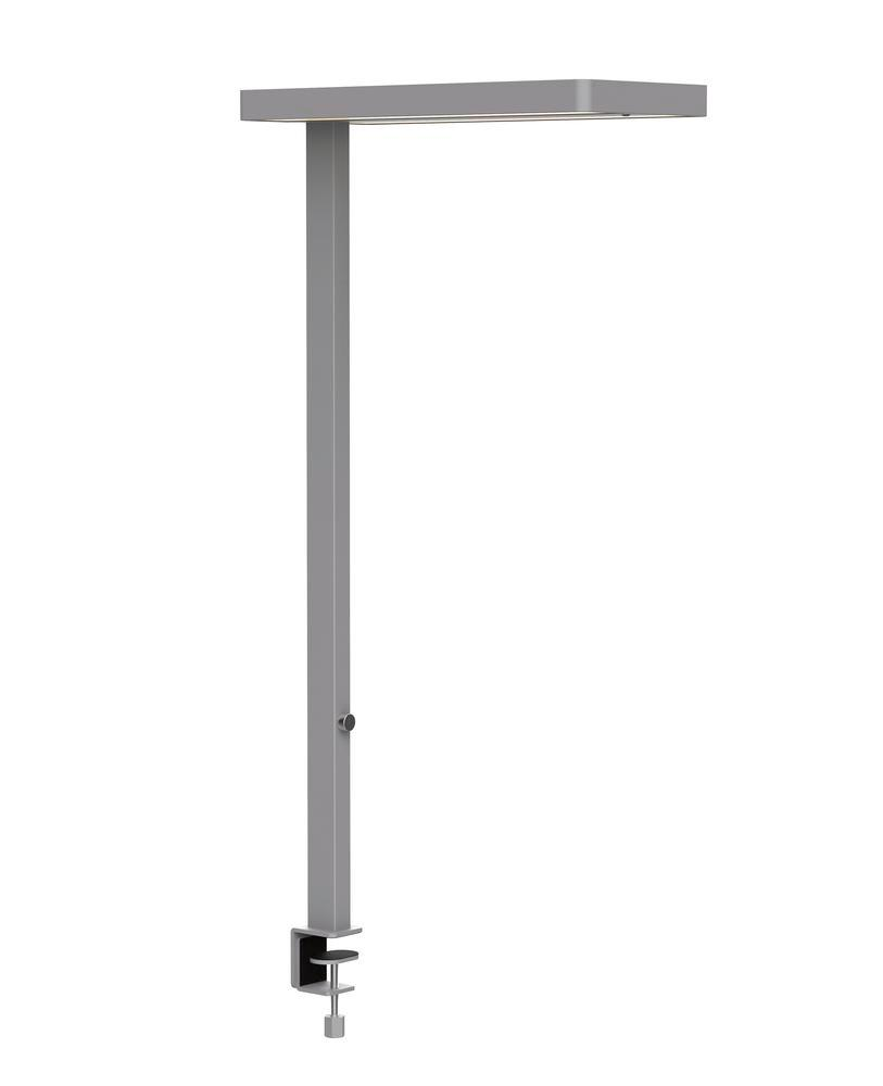 LED standard lamp, MAULJuvis, dimmable, height 1950 mm, with clamp